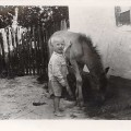 Summer of 1961. The first horse of Vi :)